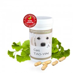 Cani TAO-YIN - used for Anaemia, Tireness, Tracheal collapse, Decreased immunity, Asthenia, Urinary incontinence - for dogs